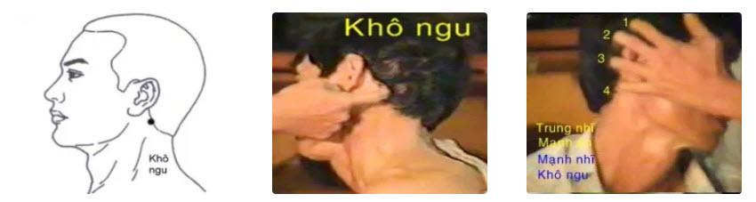 Huyệt Khô Ngu