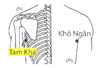 Huyệt Tam Kha