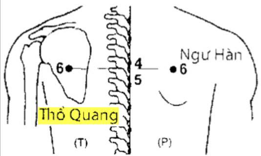 Huyệt Thổ Quang